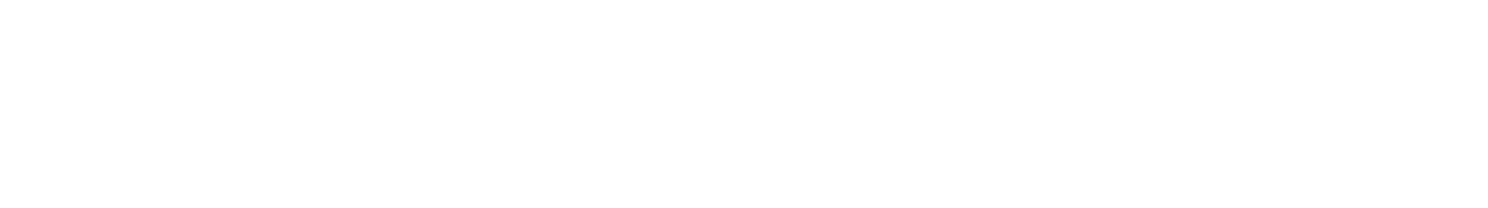 Family Solutions Services
